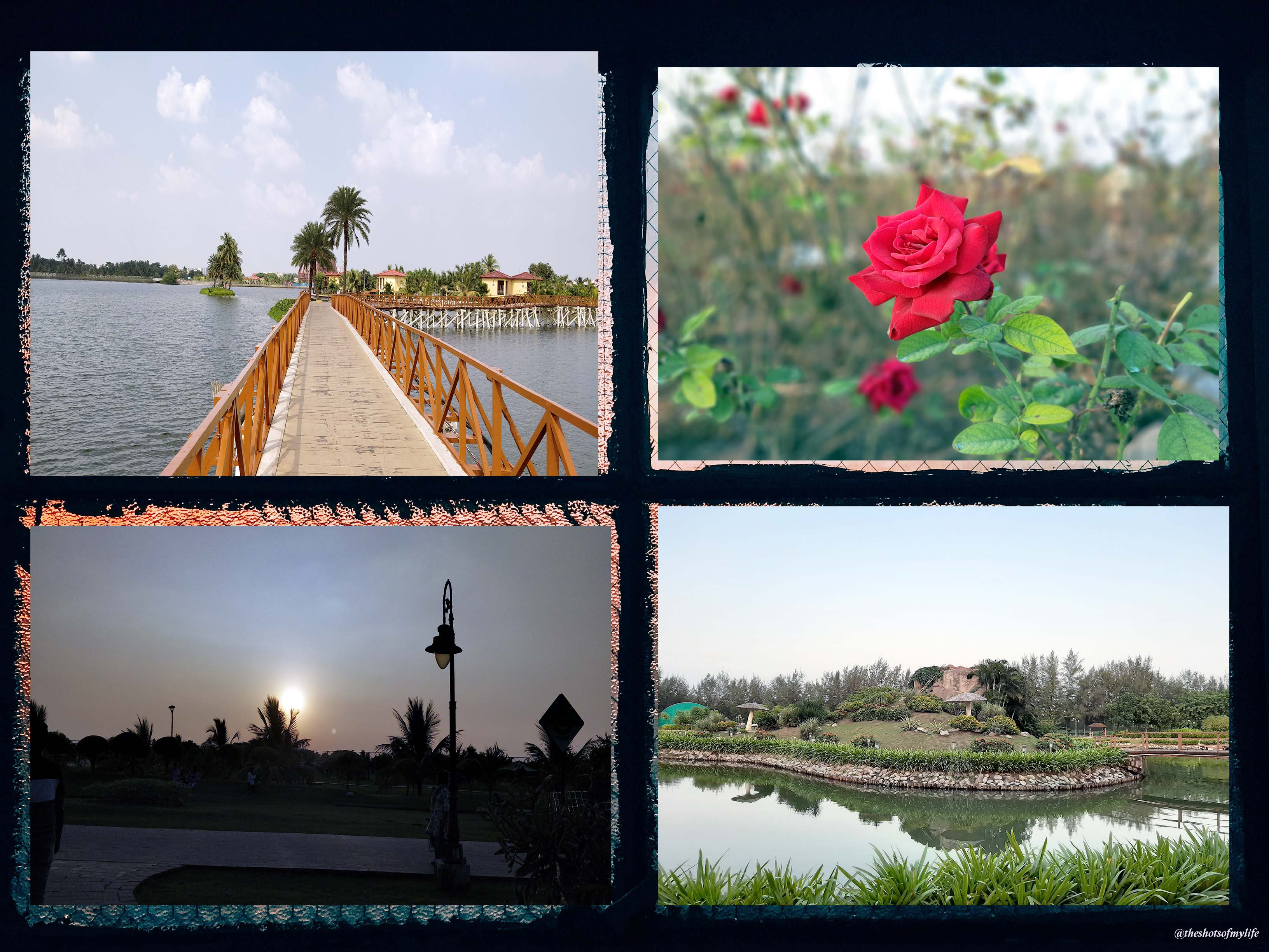Collage of eco park