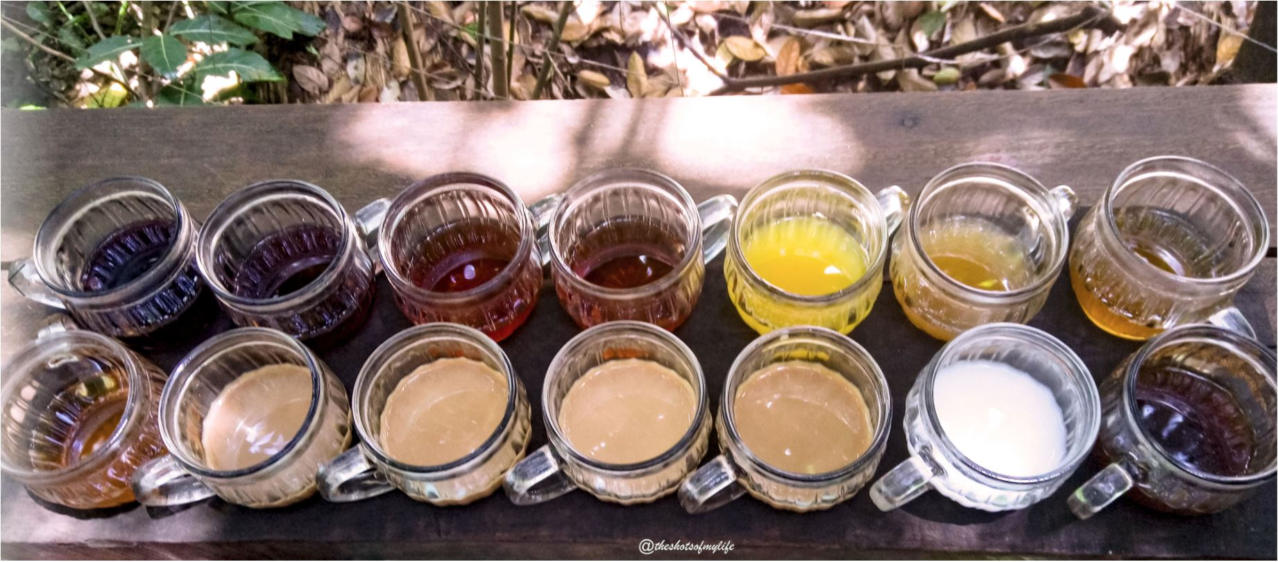 Varieties of coffee served at a plantation in Bali